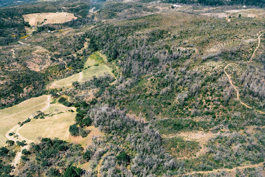 Hills West of Sonoma_