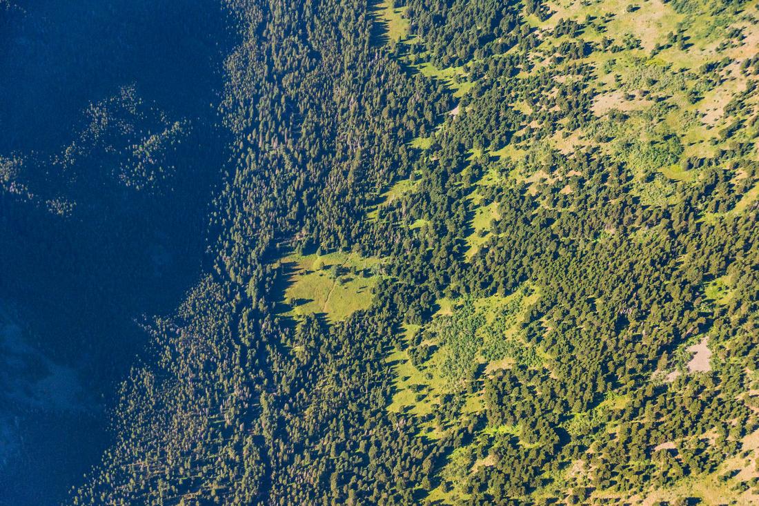 Spanish Creek Gallatin National Forest-3
