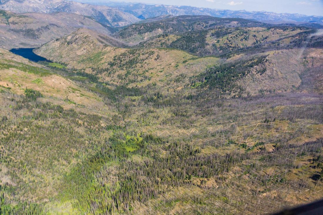Burnt Log Road Salmon River Mountains Riordan Lake