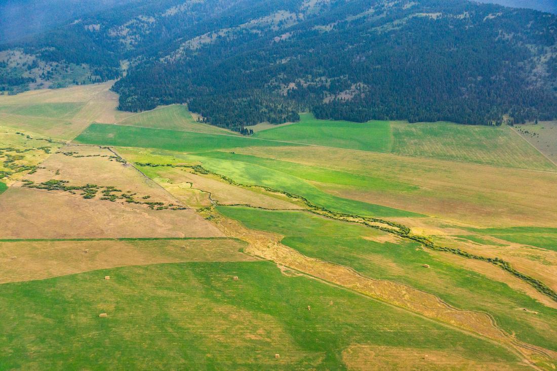 Camas Meadows-12