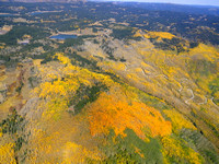 Aspen_Trees_Fall_Beauty_Colorado_EcoFlight07